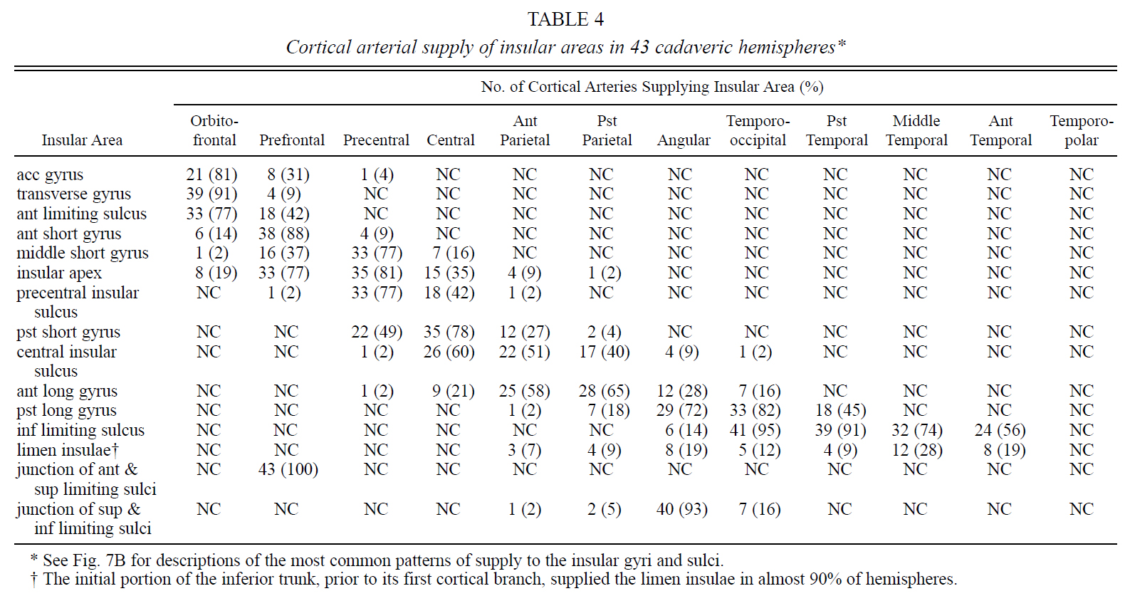 Table 4.Cortical arterial supply of insular areas in 43 cadaveric hemispheres.