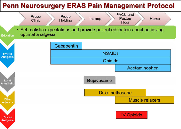 Figure 2: Pain management included in the ERAS protocol. Originally published in reference 3.