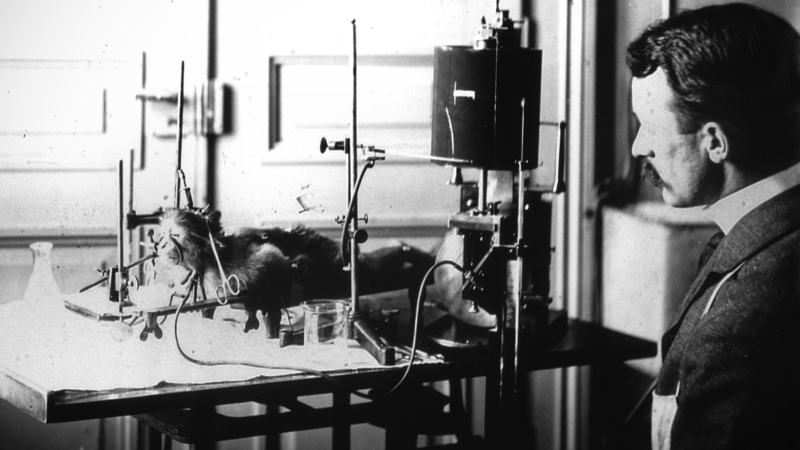 Figure 1: Harvey Cushing studied physiological effects of increased intracranial tension (Cushing reflex) in the Hunterian laboratory on primates at the Johns Hopkins Hospital (circa 1904).
