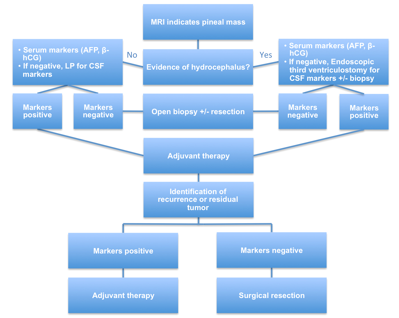 Figure 3: The recommended decision tree to deal with uncertainties associated with the diagnosis of a pineal region tumor is indicated.